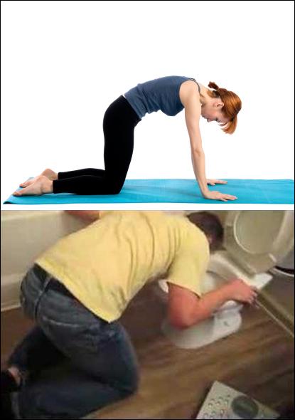 marjariasana-yoga-pose