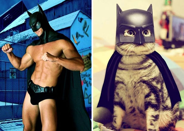 ciplak-batman-kedi