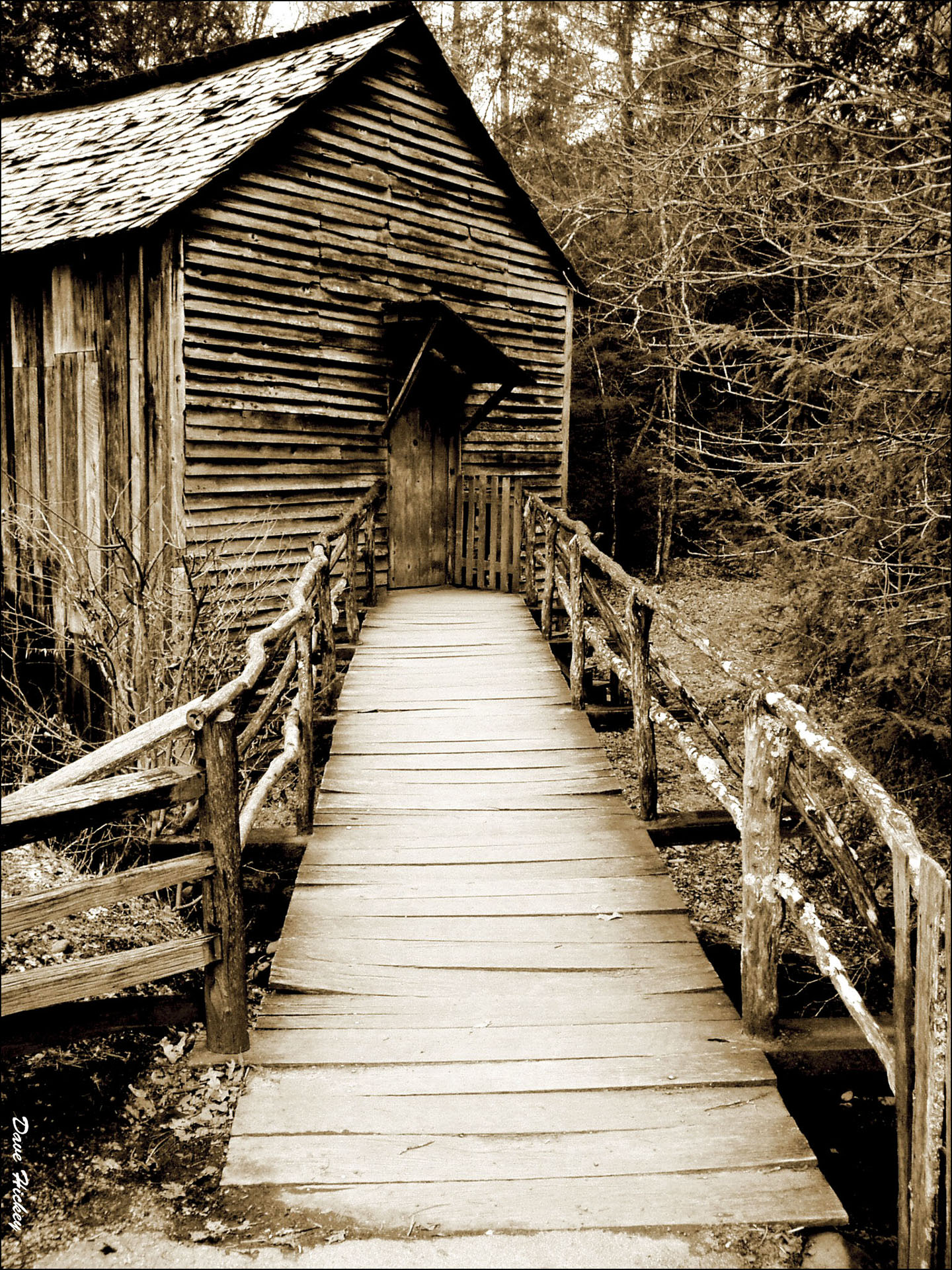 The Old Mill_Sepia