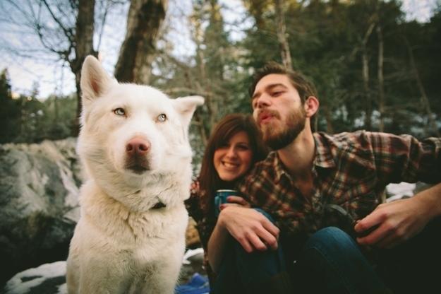 sevimli köpekler (7)