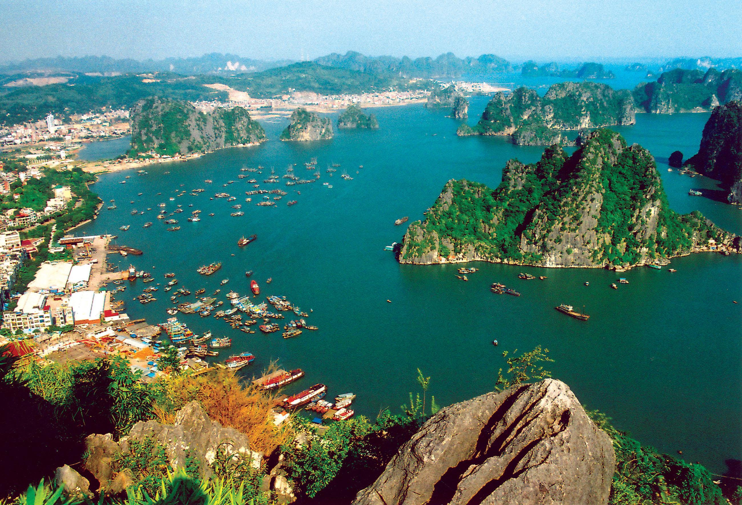 vietnam-dunya-vergi-oranlari-