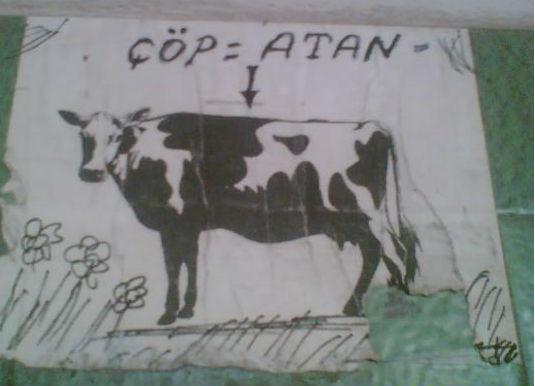 cop-atan-hayvan