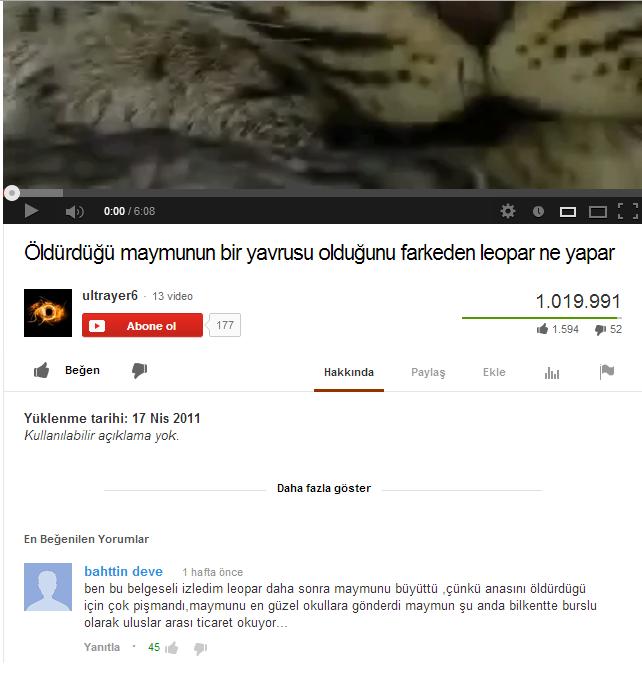 oldurdugu-maymnunun-bir-yavurusu-oldugu-farkeden-leopar-yaran-youtube