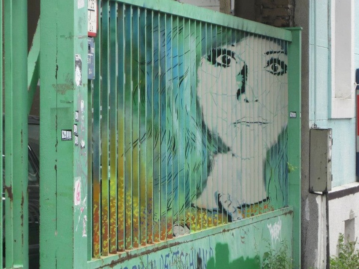 zebrating-demir-grafiti