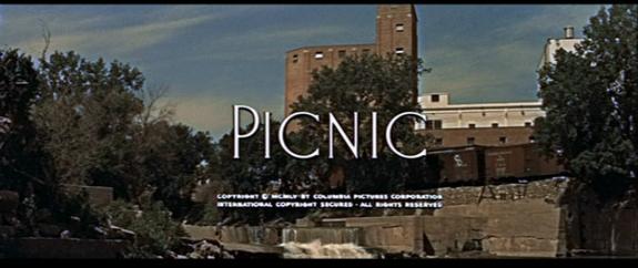 25.-kare-piknik-filmi