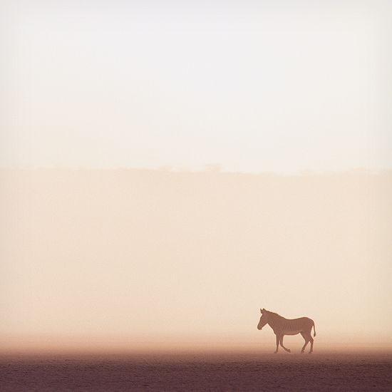 at-fotografi-minimalist