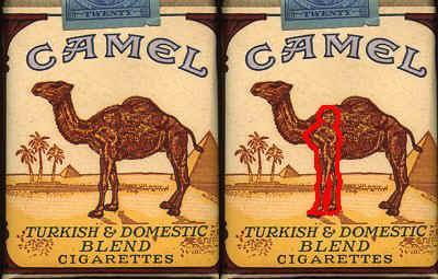 camel-25.kare-bilincalti