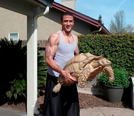 dünyanın en büyük kaplumbağası