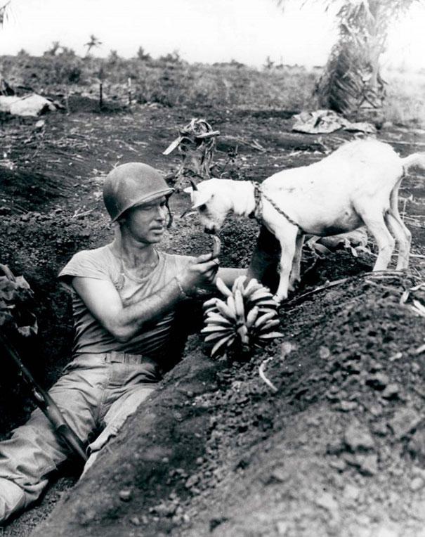 keciyle-muzunu-paylasan-asker-1944