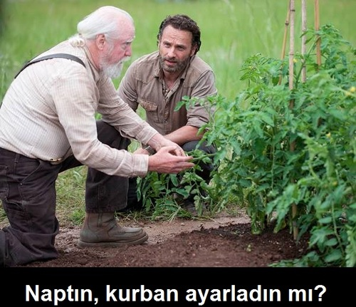the-walking-dead-naptin-kurban-ayarladin-mi