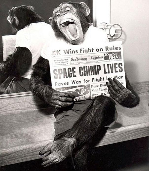 uzaya-gonderilen-maymun-1961