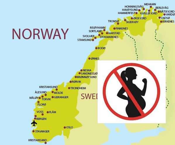 34.norveç