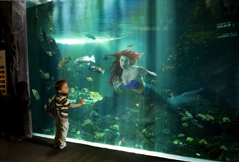 ariel-kucuk-deniz-kizi-akvaryum-gulu