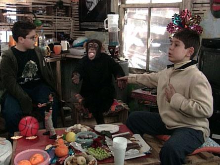 bes-maymun-cetesi-diziler