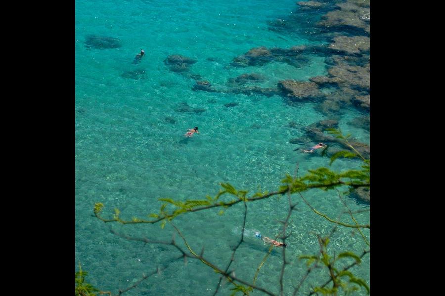 dunyanin-en-temiz-denizleri-hanauma-bay-oahu-havayi