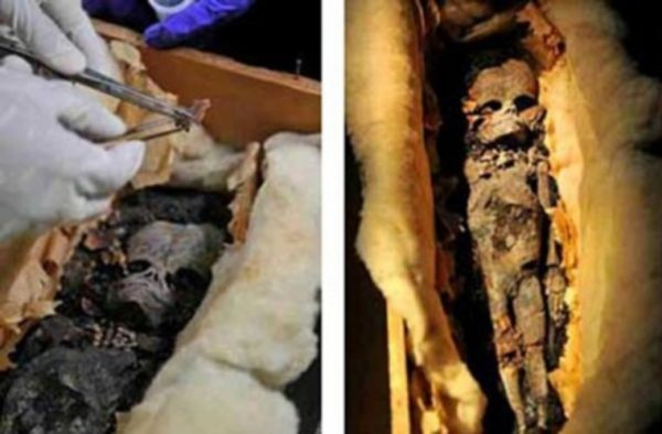 Ancient-Alien-Mummy-Discovered-In-Egypt-2
