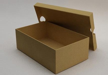 ayakkabi-kutusu-olum-getirdi-2013-12-20_m