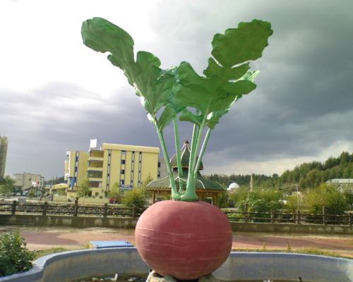 osmaniye-turp-heykeli