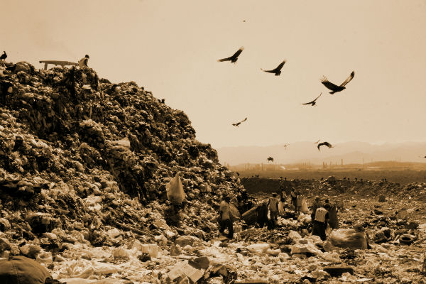 3-waste-land-copluk