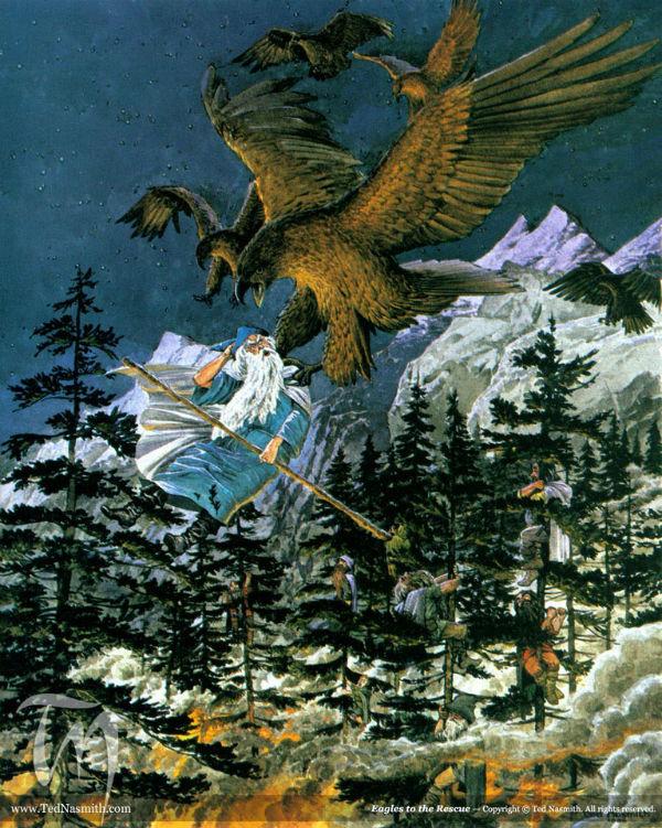 TN-Eagles-to-the-Rescue
