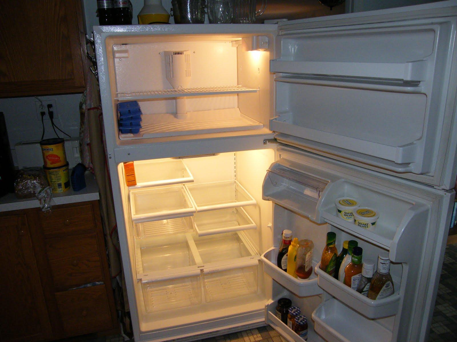 agzina-kadar-bos-buzdolabi