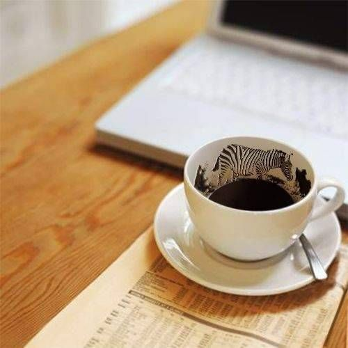 kahvefalc4b1