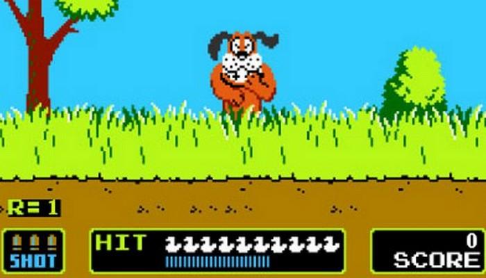 Duckhunt Dog
