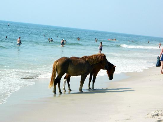assategue-beach