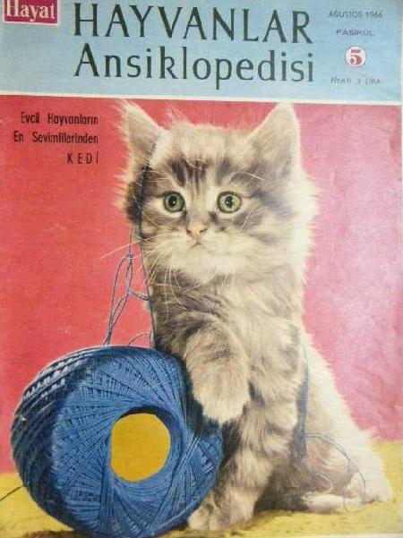 hayat-hayvanlar-ansiklopedisi