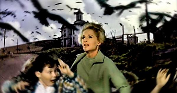 Bir nesilde fobi yaratan film Kuslar (The Birds)