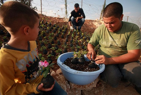 tear-gas-flower-pots-palestine-10