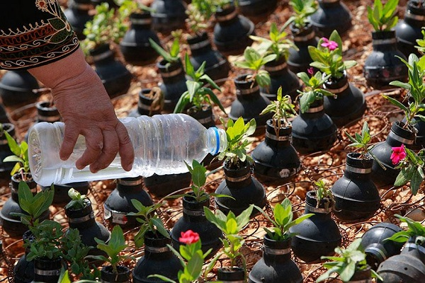 tear-gas-flower-pots-palestine-11