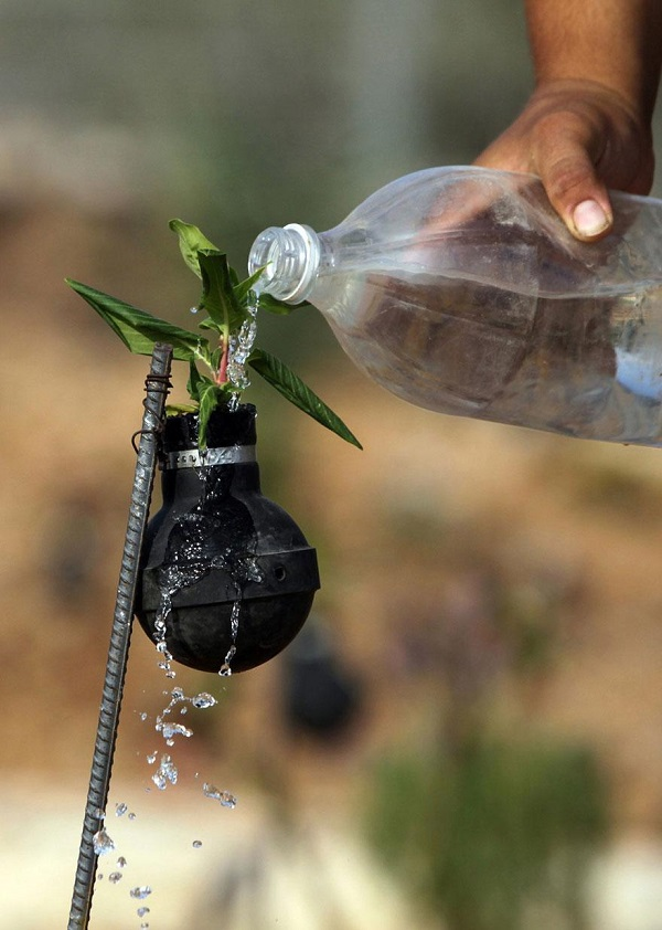 tear-gas-flower-pots-palestine-6
