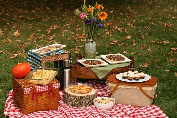 vazo-cicek-piknik