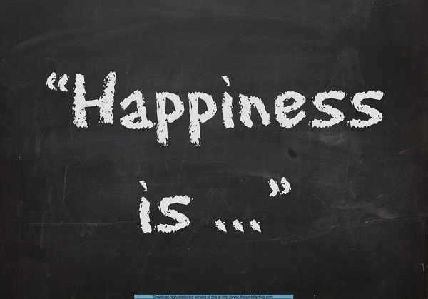 Happiness-is-the grant study