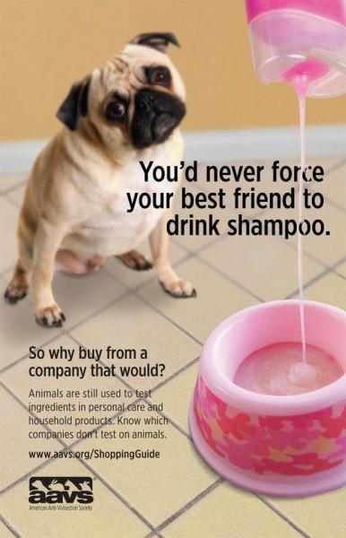 animal-testing-poster