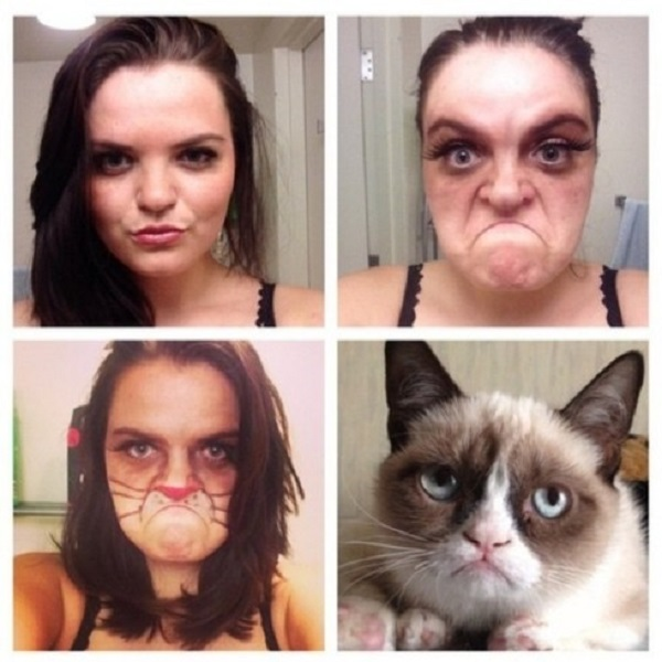 grumpy-cat-e-de-donustuler