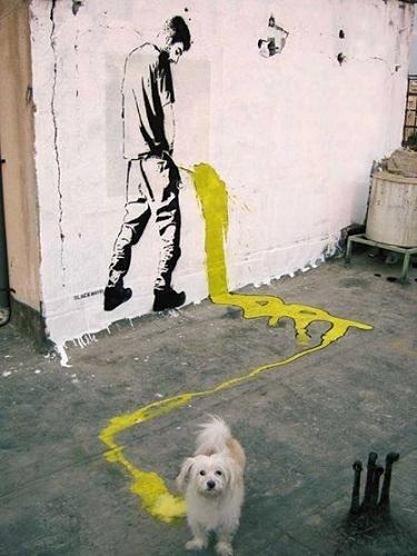 tahran-sokaklarini-renklendiren-sanatci.10