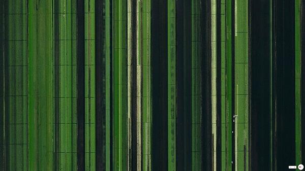 uydu-goruntusu-23