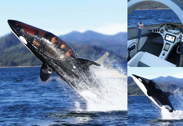 balina-denizalti