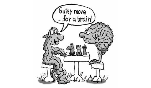 beyin-bagirsak-kapisiyor