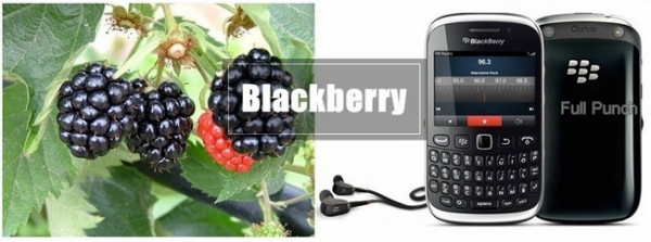blackberryyy