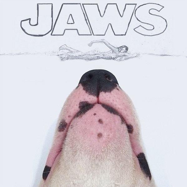 kopek-jaws