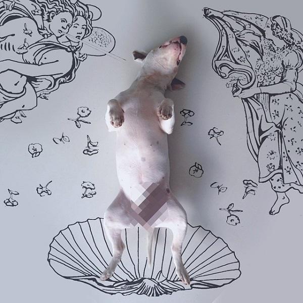 kopek-mitoloji