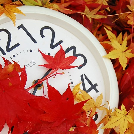 saat-dokulmus-yapraklar
