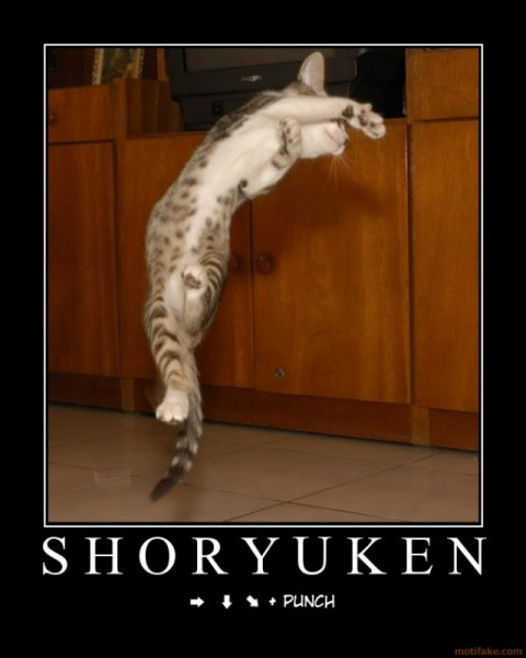 shoryuken-figher-cat-shoryuken-demo