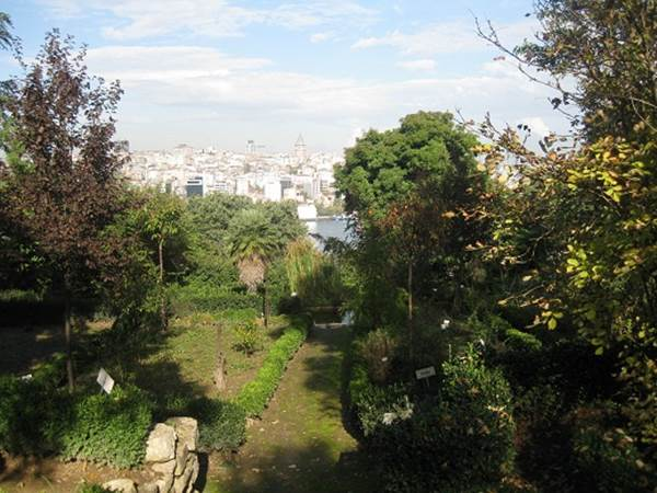 botanik-park-listelist