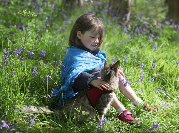 iris-and-thula-having-a-chat-in-the-bluebell-woodland
