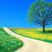 Doğa | Listelist