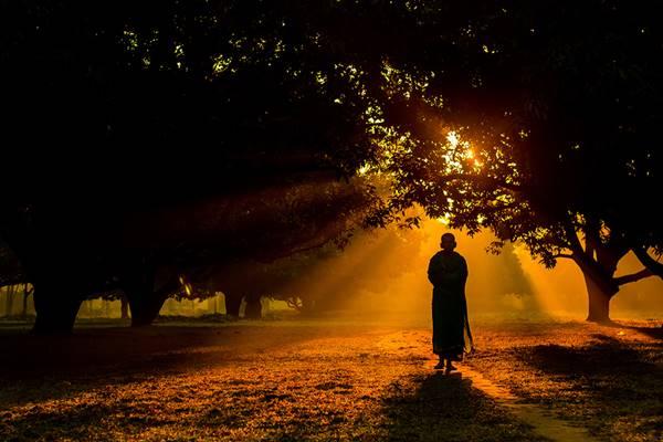 sony-fotograf-yarismasi-2015-003